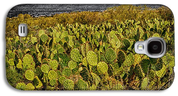 Galaxy S4 Case featuring the photograph A Prickly Pear View by Mark Myhaver