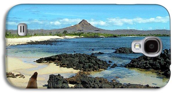 A Sea Lion (eumetopias Jubatus Galaxy S4 Case
