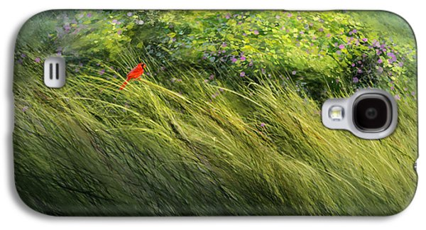Cardinal Galaxy S4 Case - A Spot Of Red by Aaron Blaise