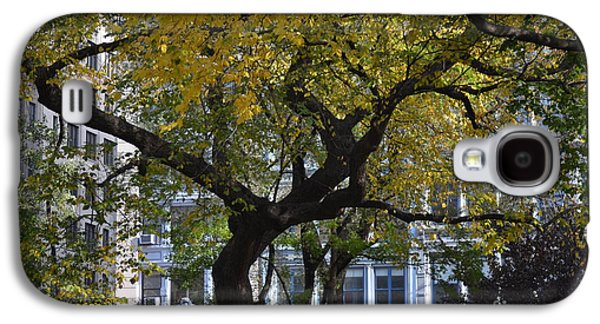 A Tree On Fifth Avenue Galaxy S4 Case by Robert Daniels