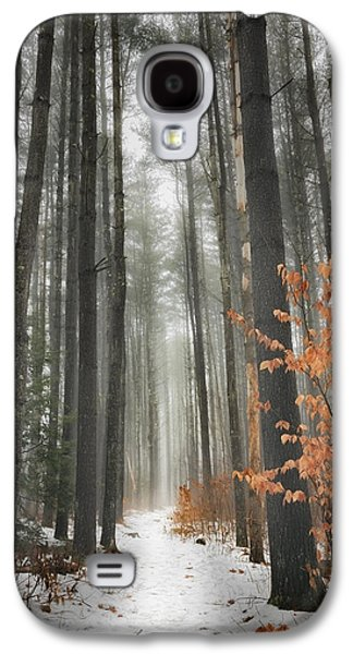 A Winters Path Galaxy S4 Case by Bill Wakeley