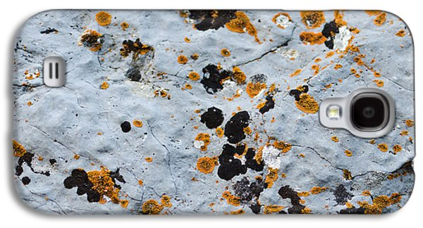 Abstract Orange Lichen 1 Galaxy S4 Case