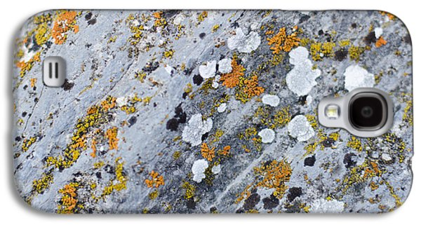 Abstract Orange Lichen 2 Galaxy S4 Case