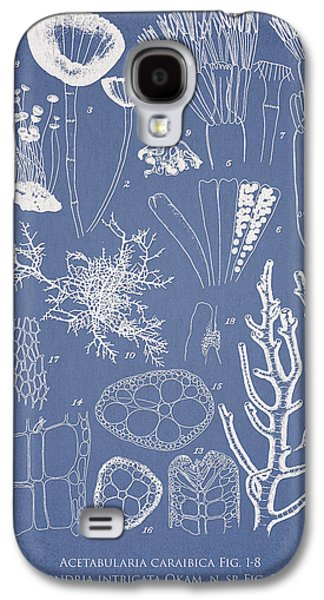 Acetabularia Caraibica And Chondria Intricata Galaxy S4 Case by Aged Pixel