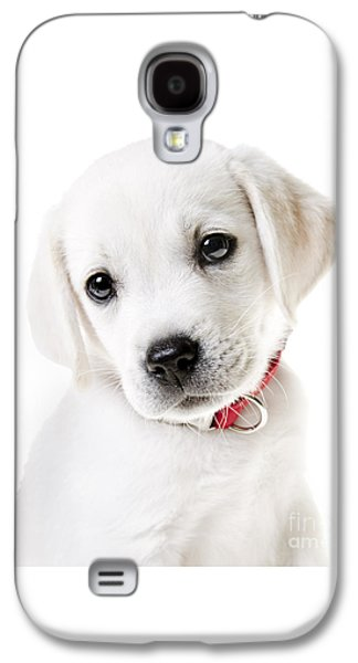 Adorable Yellow Lab Puppy Galaxy S4 Case by Diane Diederich