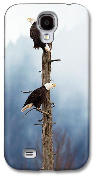 Adult Bald Eagles  Haliaeetus Galaxy S4 Case by Doug Lindstrand