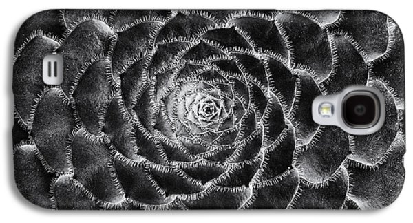 Aeonium Monochrome Galaxy S4 Case by Tim Gainey