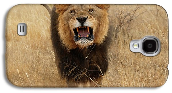 Africa, Namibia Aggressive Male Lion Galaxy S4 Case by Jaynes Gallery