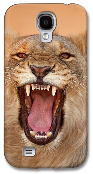 Africa, Namibia Male Lion Growling Galaxy S4 Case by Jaynes Gallery