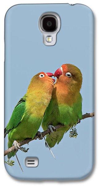 Lovebird Galaxy S4 Case - Africa, Tanzania, Serengeti by Charles Sleicher