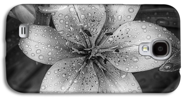 Lily Galaxy S4 Case - After The Rain by Scott Norris
