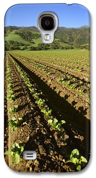 Agriculture - Field Of Early Growth Galaxy S4 Case