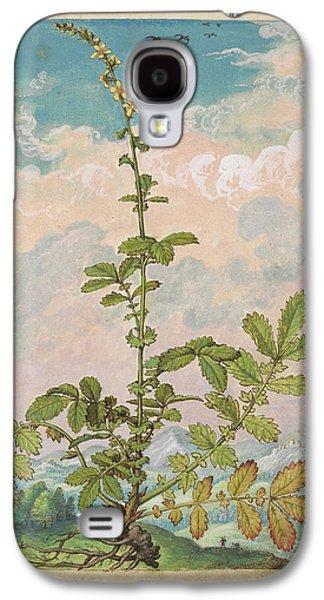 Agrimony (agrimonia Eupatoria) Galaxy S4 Case by British Library