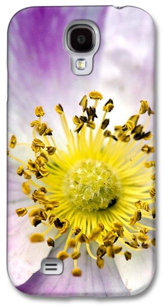 Alberta Wild Rose Galaxy S4 Case