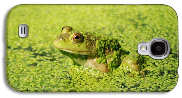 Algae Covered Frog Galaxy S4 Case by Optical Playground By MP Ray