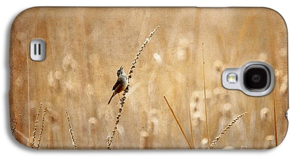 Wren Galaxy S4 Case - All Rejoicing by Lois Bryan