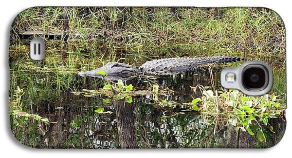 Alligator In Swamp Galaxy S4 Case by Jim West