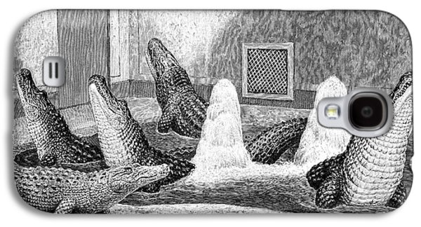 Alligators In Captivity Galaxy S4 Case by Science Photo Library