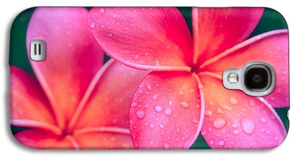 Aloha Hawaii Kalama O Nei Pink Tropical Plumeria Galaxy S4 Case