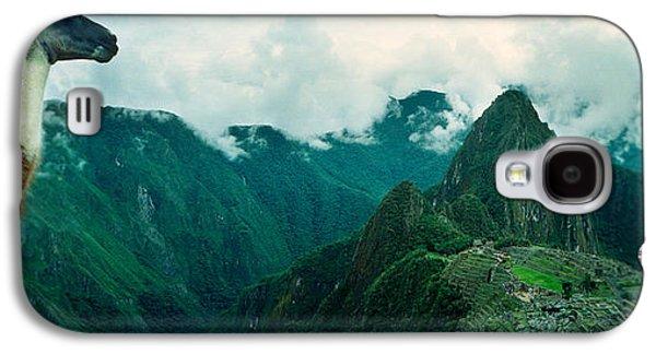 Alpaca Vicugna Pacos On A Mountain Galaxy S4 Case