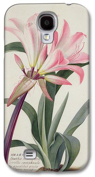 Lily Galaxy S4 Case - Amaryllis Belladonna, 1761 by Georg Dionysius Ehret