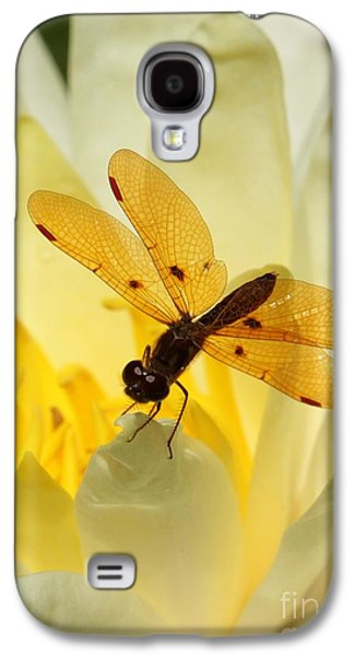 Amber Dragonfly Dancer Galaxy S4 Case