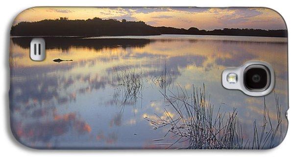 American Alligator Everglades Np Florida Galaxy S4 Case