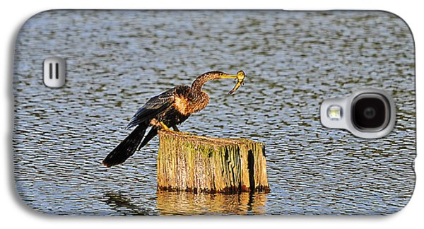 American Anhinga Angler Galaxy S4 Case by Al Powell Photography USA