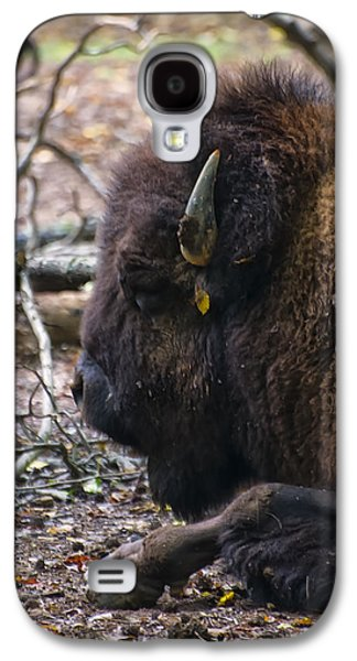 american Bison Galaxy S4 Case by Chris Flees