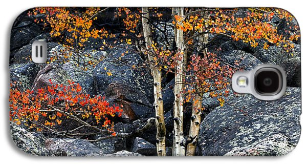 Among Boulders Galaxy S4 Case by Chad Dutson