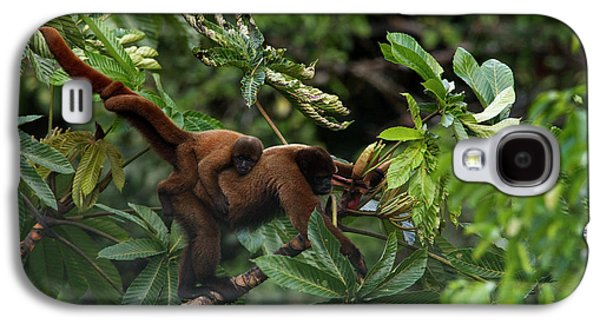 Monkey Galaxy S4 Case - An Adult Woolly Monkey With Young by Steve Winter