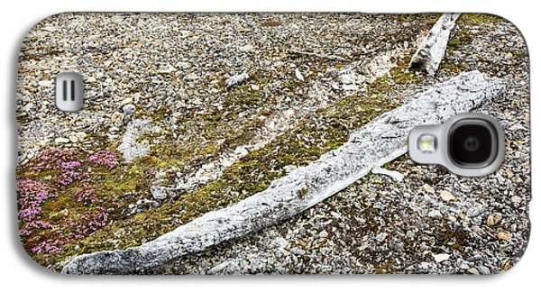 Ancient Whale Jaw Bones On Raised Beach Galaxy S4 Case by Ashley Cooper