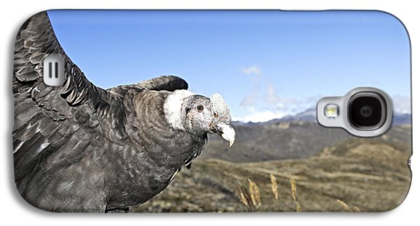Andean Condor Galaxy S4 Case by M. Watson