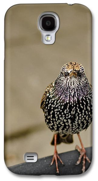 Angry Bird Galaxy S4 Case by Heather Applegate