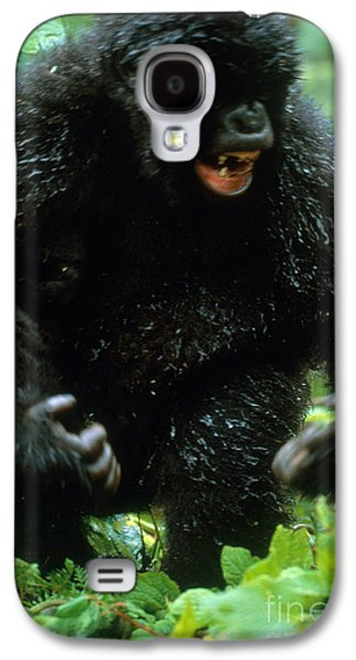 Angry Mountain Gorilla Galaxy S4 Case by Art Wolfe