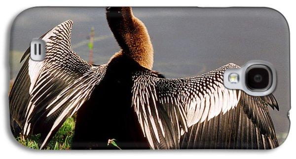 Anhinga Anhinga Anhinga Drying Plumage Galaxy S4 Case by Millard H. Sharp
