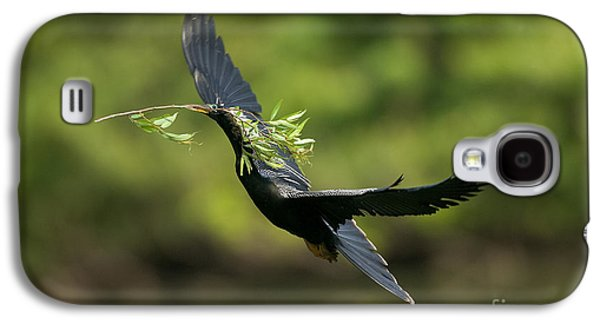 Anhinga Galaxy S4 Case by Anthony Mercieca