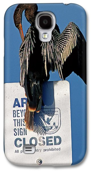 Anhinga Perched On A Signpost Galaxy S4 Case