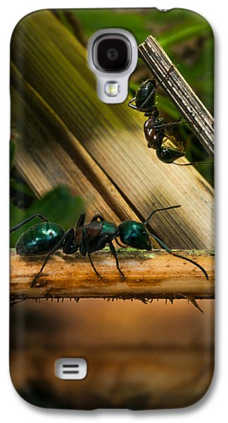 Ants Adventure 2 Galaxy S4 Case