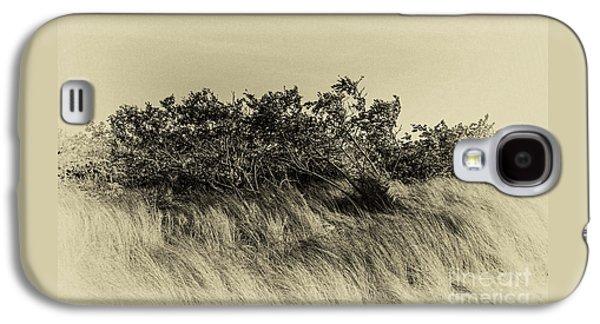Apollo Beach Grass Galaxy S4 Case