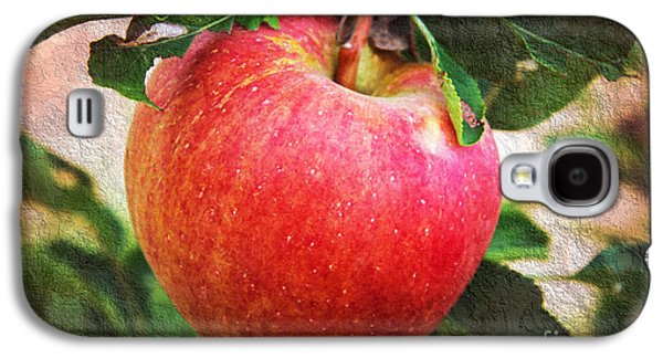Apple On The Tree Galaxy S4 Case by Andee Design