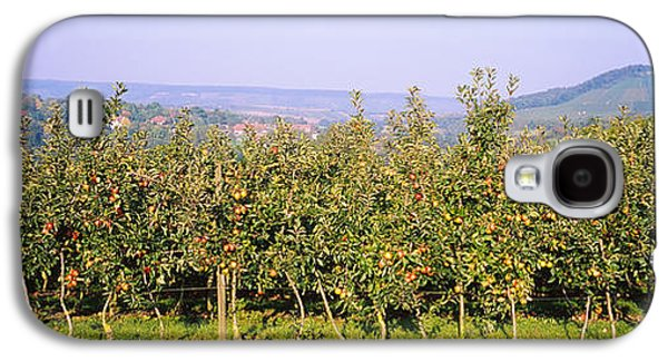 Apple Trees In An Orchard, Weinsberg Galaxy S4 Case