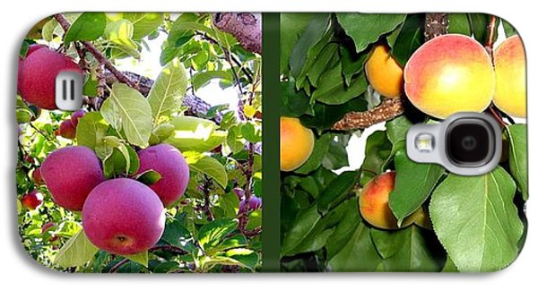Apples And Apricots Galaxy S4 Case