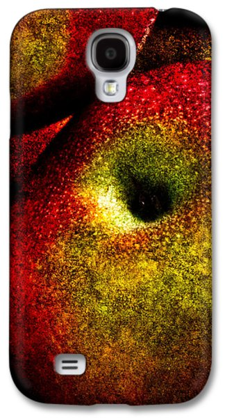 Apples Two Galaxy S4 Case by Bob Orsillo
