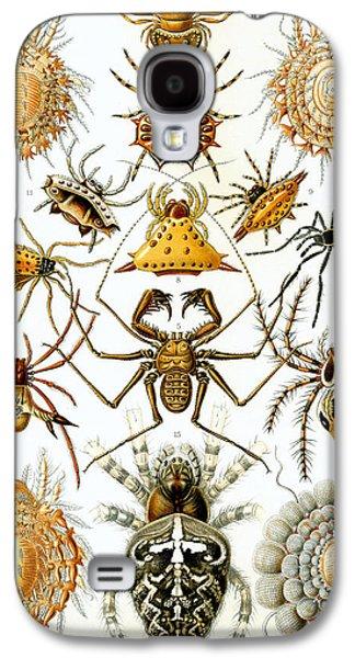 Arachnida Galaxy S4 Case by Georgia Fowler