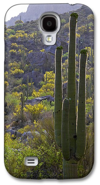 Arizona Desert Galaxy S4 Case by Samuriah Robinson