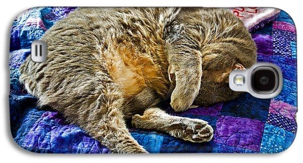 Cat Nap Galaxy S4 Case by Tim Buisman