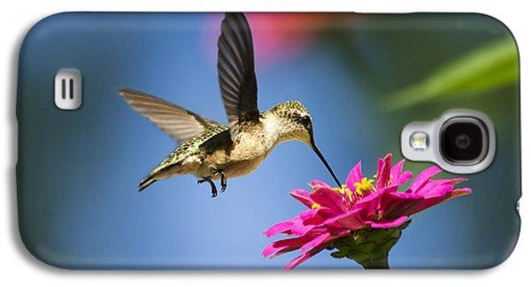 Art Of Hummingbird Flight Galaxy S4 Case
