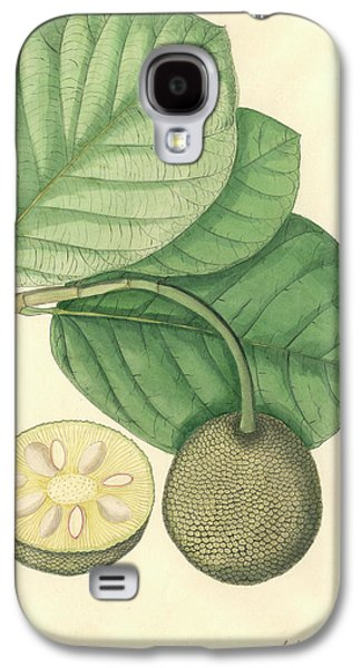 Artocarpus Chaplasha Galaxy S4 Case