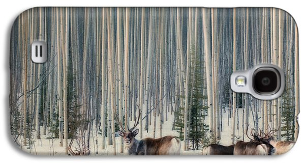 Caribou And Trees Galaxy S4 Case